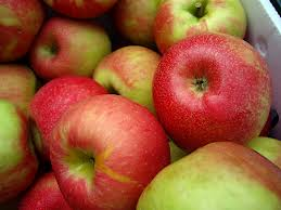 Mcintosh_Apples